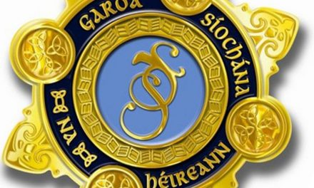 Dunboyne arrest over stolen car