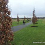 Council 'considering' reopening Navan park