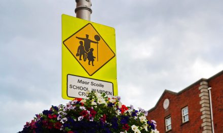 'DRIVE CAREFULLY NEAR SCHOOLS' APPEAL